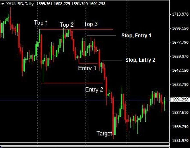 Triple option trading 583 cc