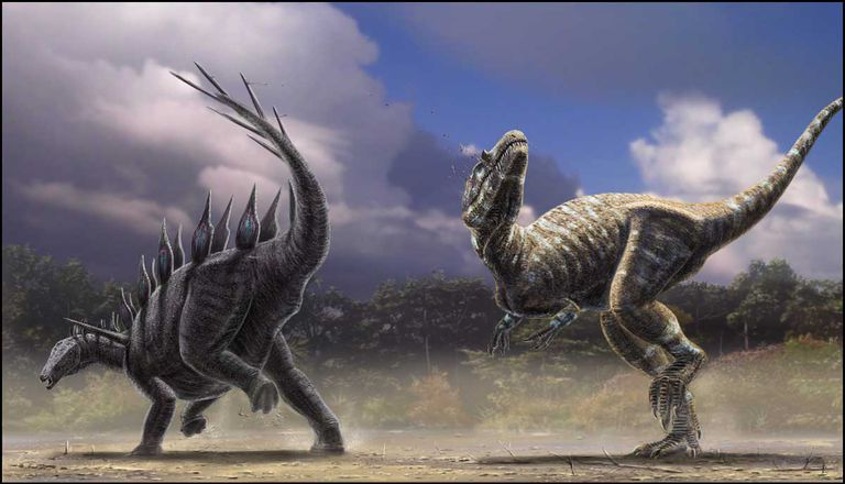 Allosaurus vs. Stegosaurus - Who Wins? T Rex Vs Triceratops Fighting