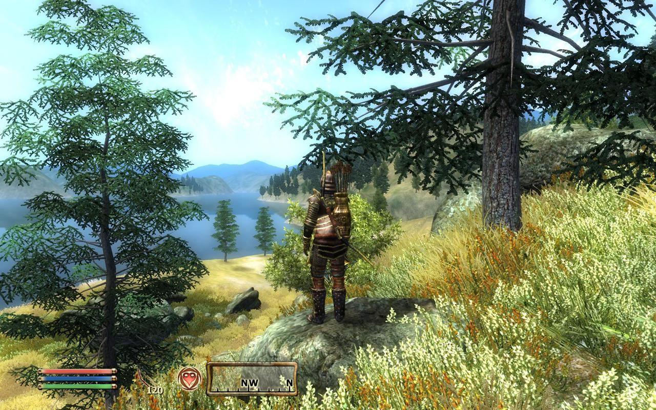 Walkthroughs and guides for The Elder Scrolls IV: Oblivion