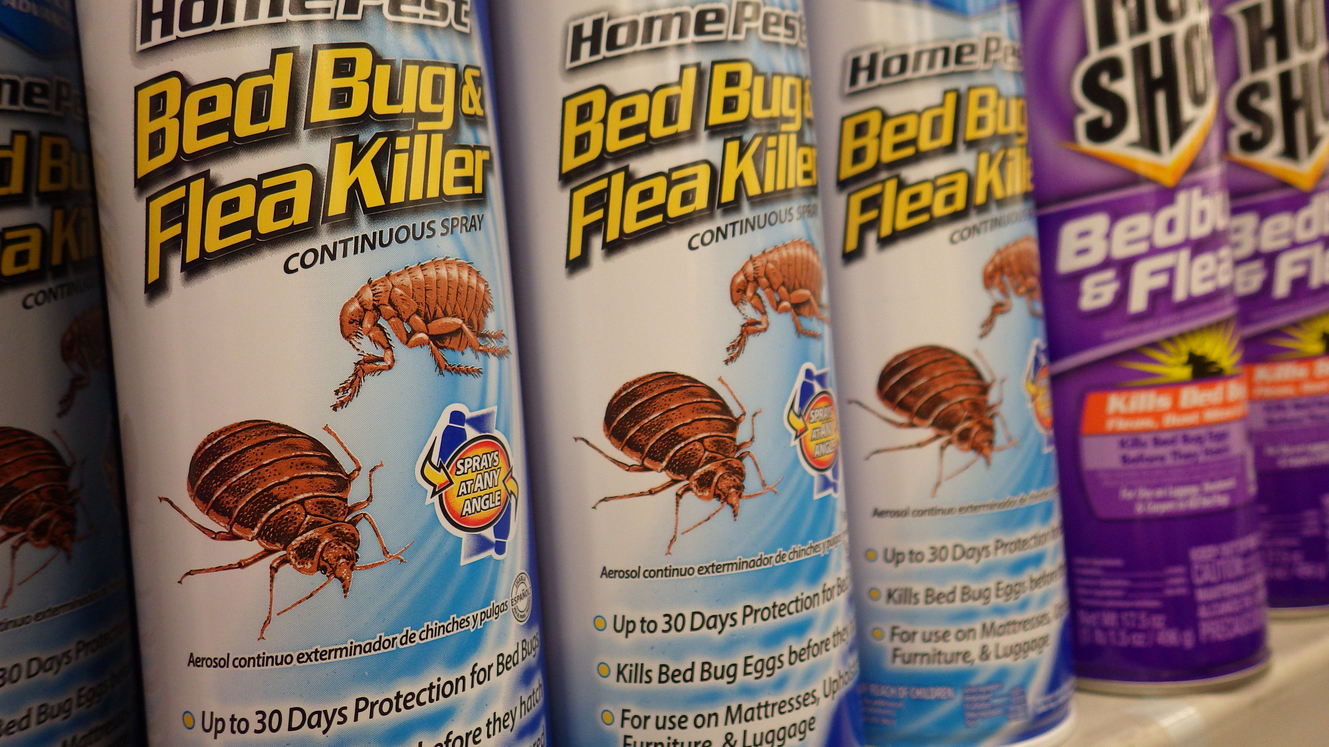how to use a bug bombs total release fogger safely