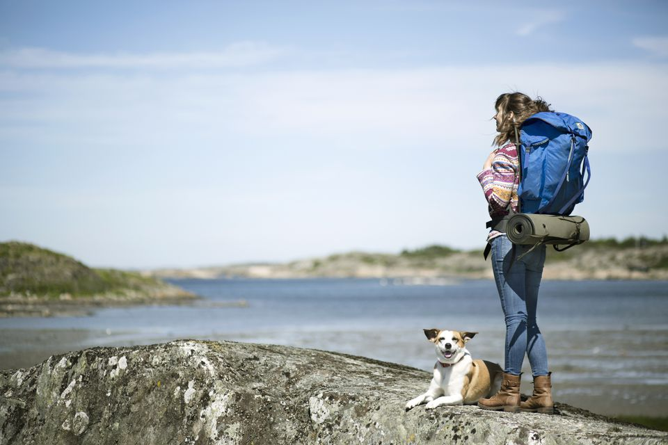 Woman hiking with her dog 519692943