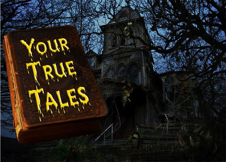 your-true-tales-2015.jpg