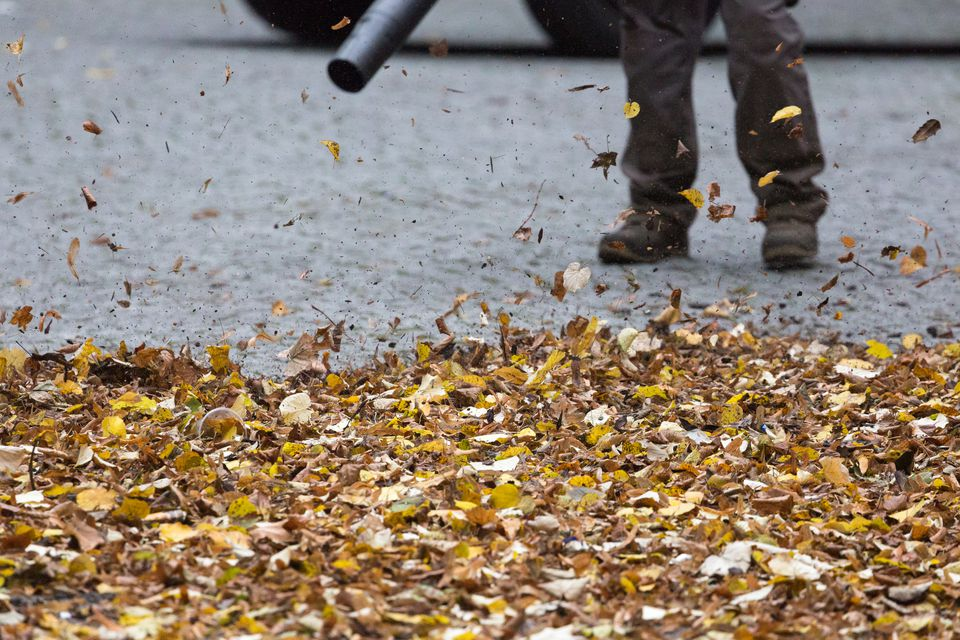 Low Section Of Worker Clearing Autumn Leaf On Footpath With Leaf Blower
