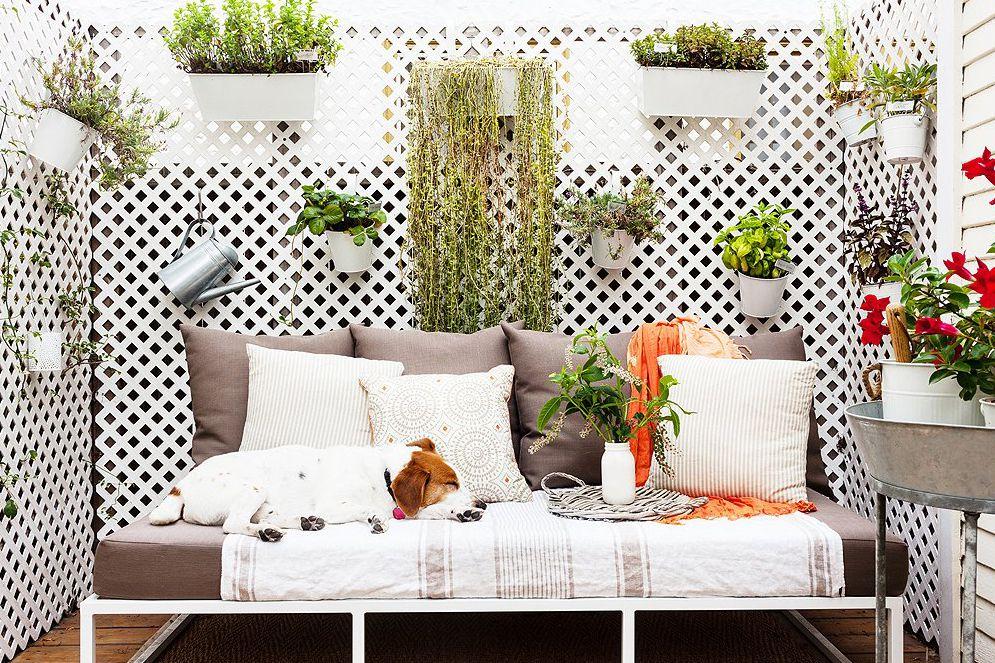 10 dog friendly ideas for balconies - Small home decor ideas ...