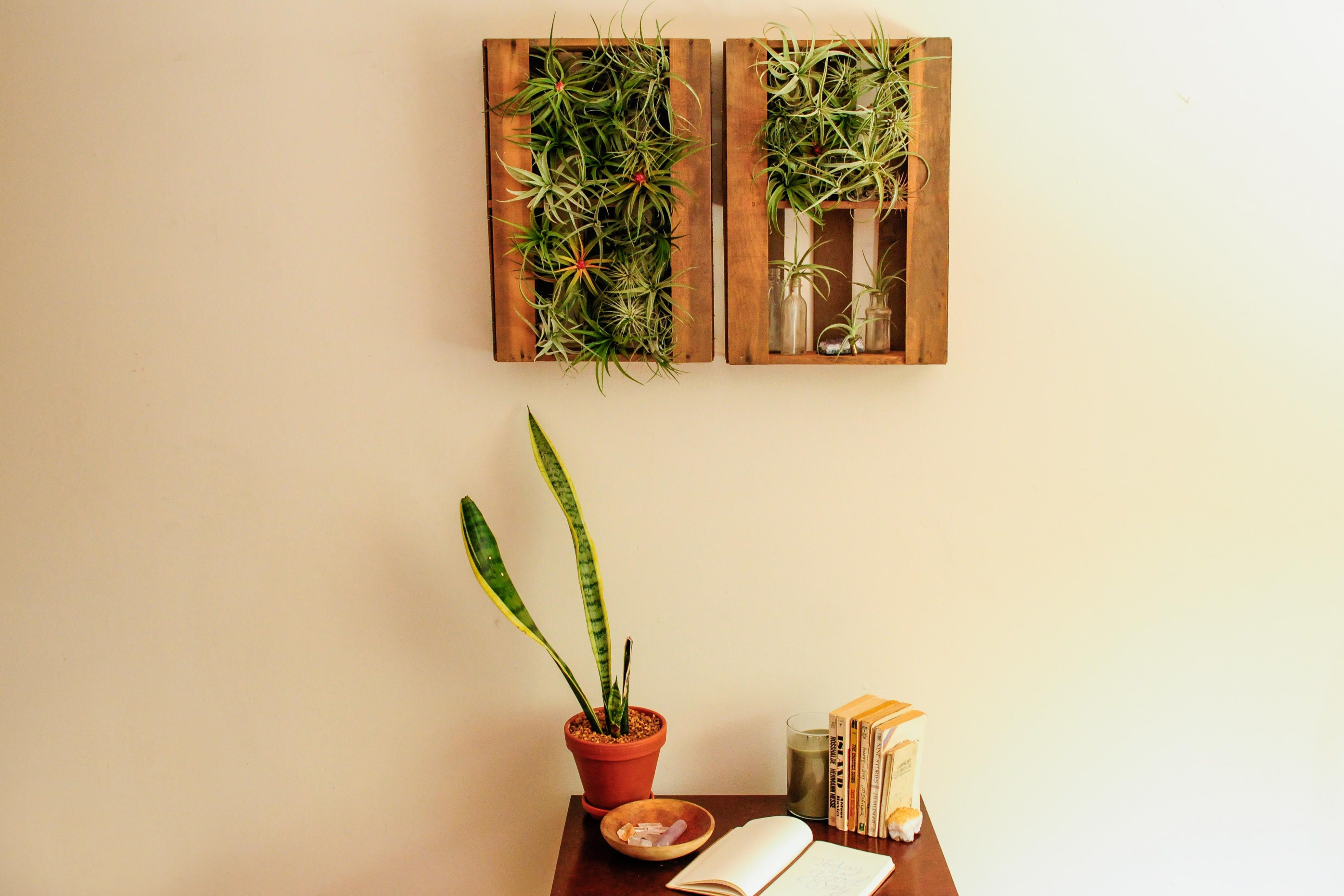 Unusual Plant Wall Art Photos - The Wall Art Decorations ...