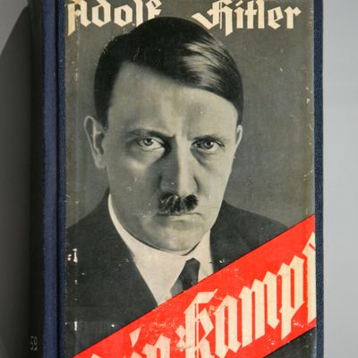 a history of the rise and fall of adolf hitler a nazi leader The rise and fall of the third reich [william l shirer] -- history of nazi germany  the rise of adolf hitler --book two:.