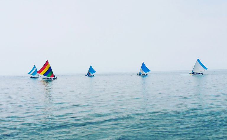 Learn about the ten most common types of sailboats and rigs.