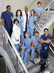 Grays anatomy episode guide