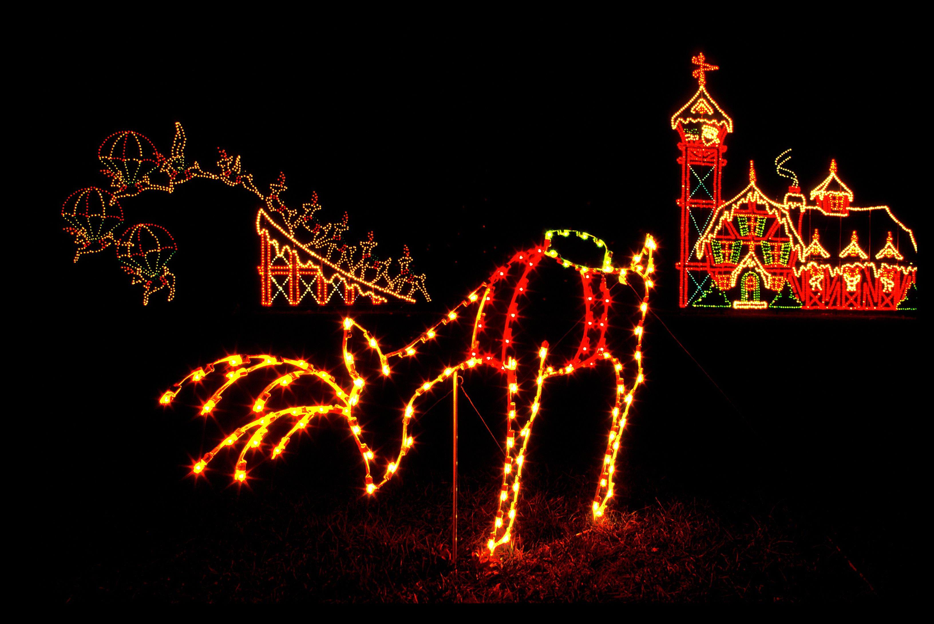 drive through the christmas lights at seneca creek state park - Christmas Lights Maryland