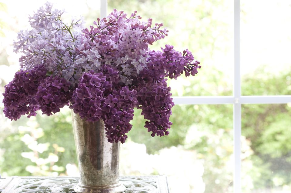 The 12 best spring wedding flowers in season lilac bouquet junglespirit Choice Image