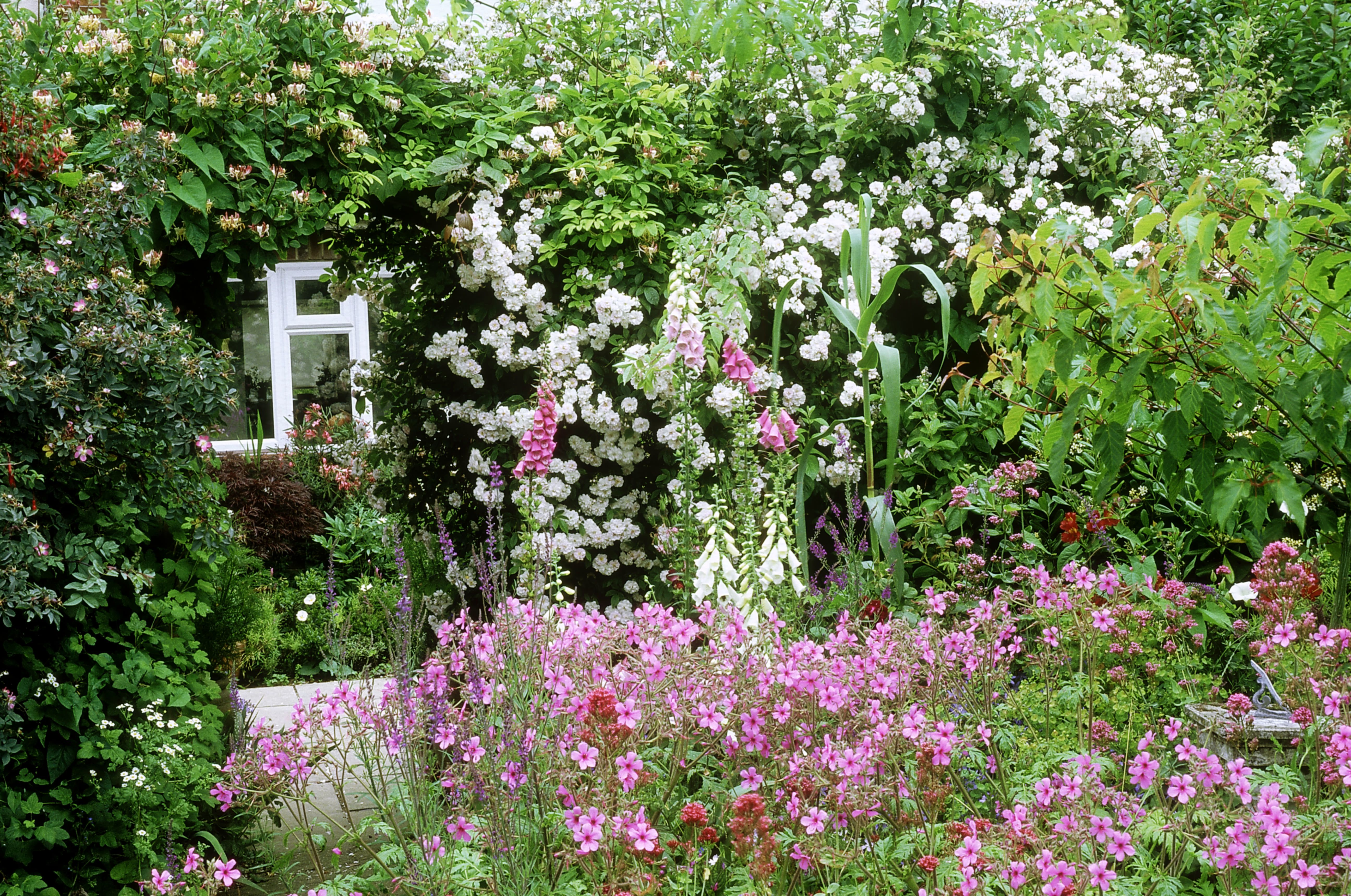 Get In Touch With The Past Grow A Cottage Garden