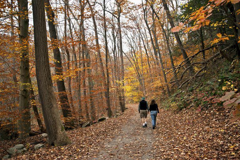 Raritan River - New Jersey in Autumn