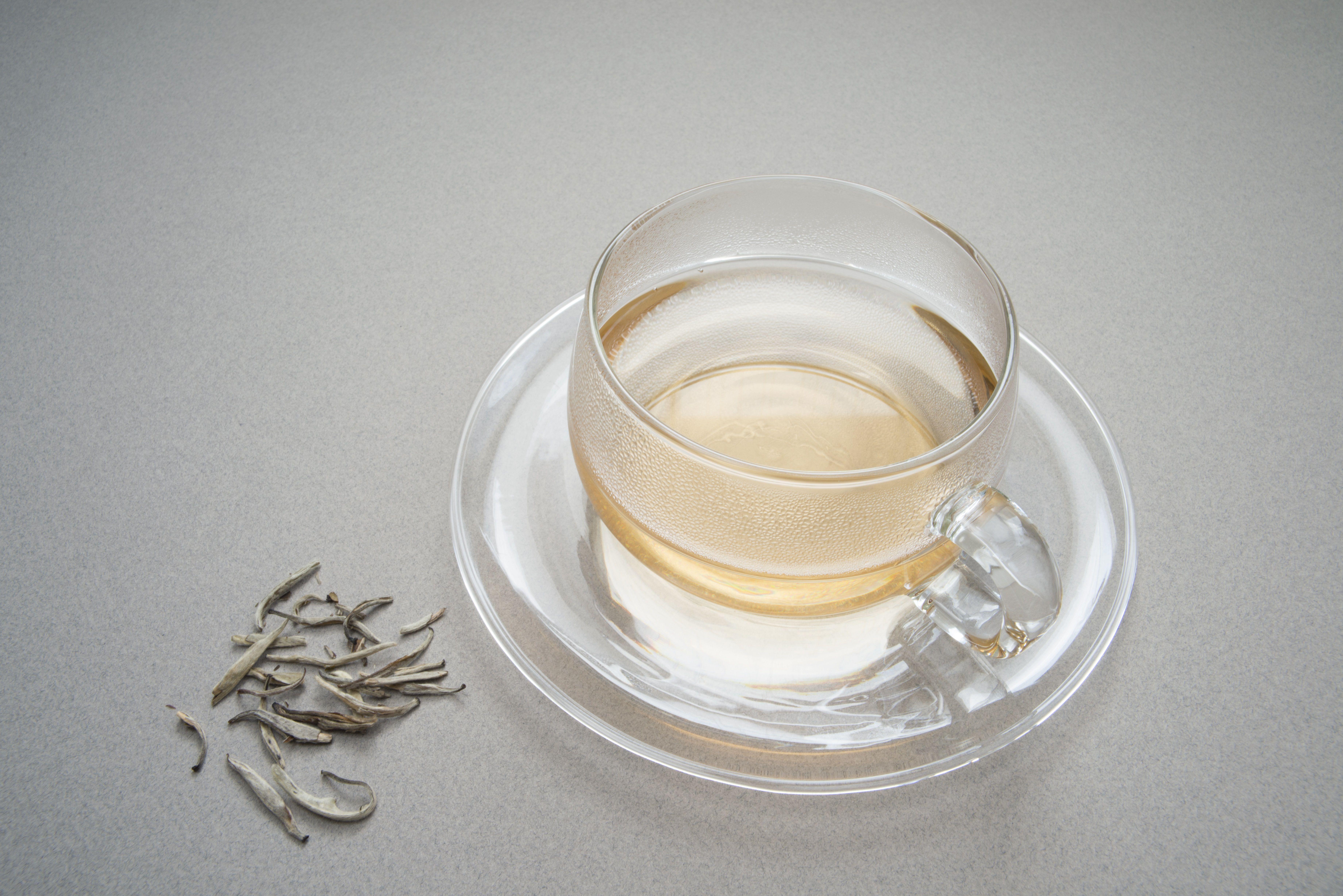 White Tea Caffeine Content Preparation And Origins