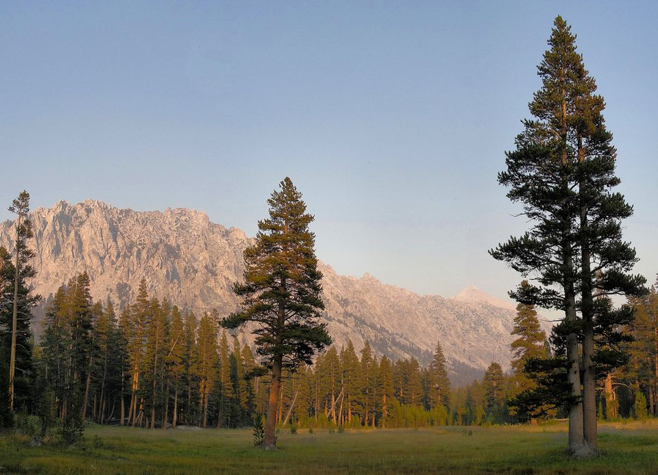 Lower Vidette Meadow in Kings Canyon National Park, California