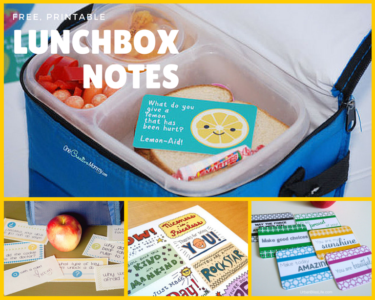 Four sets of free lunch box notes.