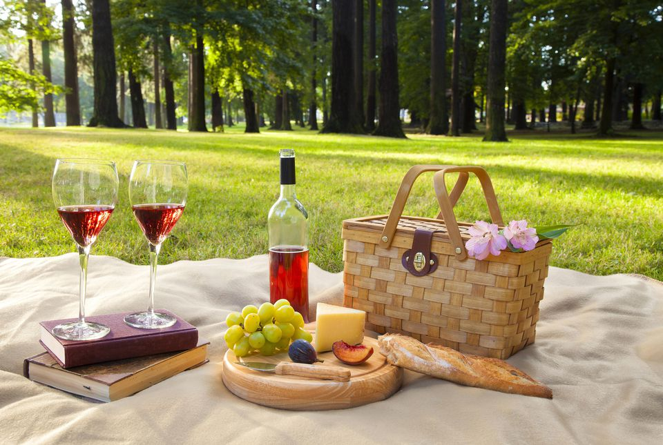 Wine, fruit, cheese and bread at picnic