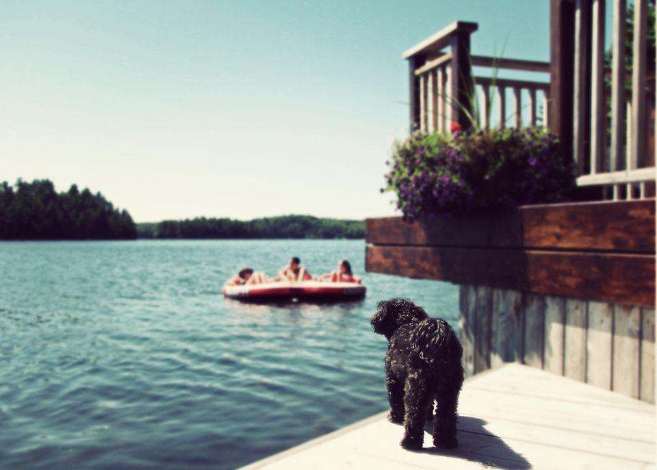 Enjoying a lake house