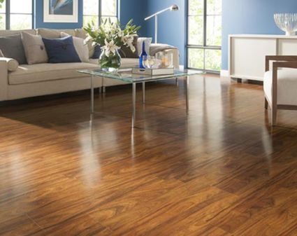 Shaw Luxury Vinyl Plank Basics Review Recommendations
