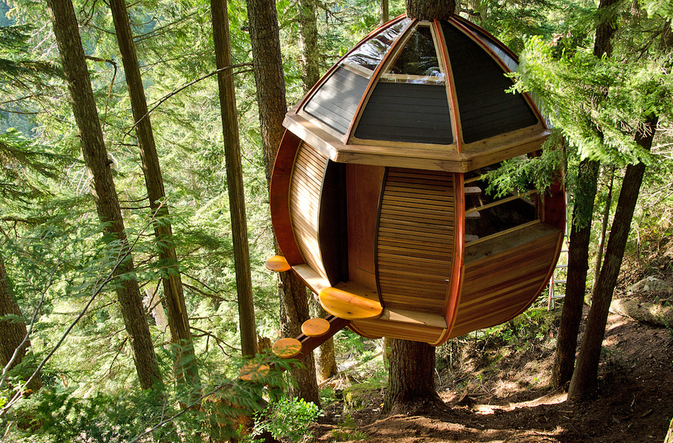 A Tree Top Retreat That Cost $8,200