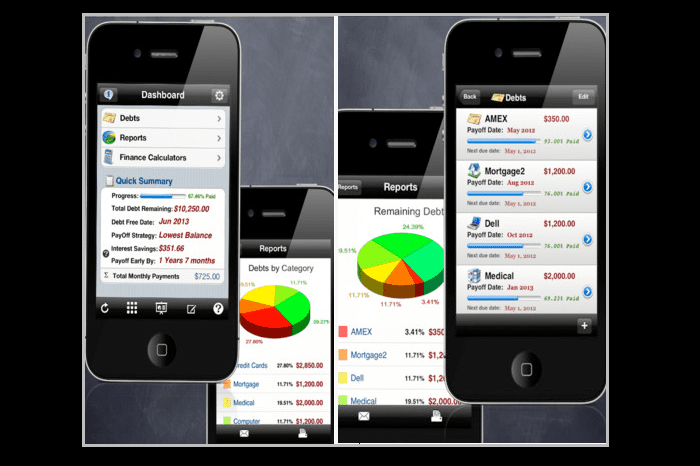Debt Free iOS App