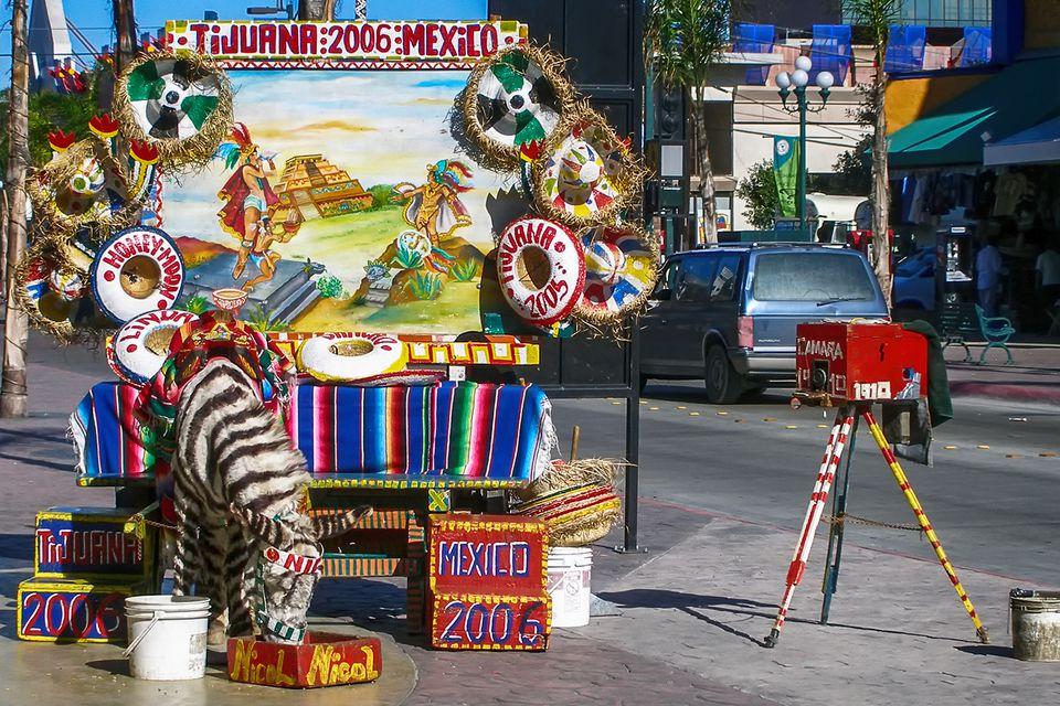 Zebra-Striped Donkey in Tijuana