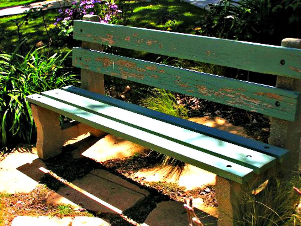old park bench lisa hallett taylor