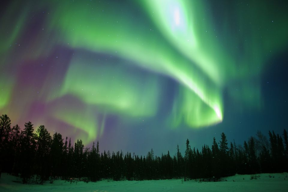 Aurora borealis,northern lights, boreal forest, Yellowknife environs, NWT, Canada Aurora borealis,northern lights, boreal forest, Yellowknife environs, NWT, Canada