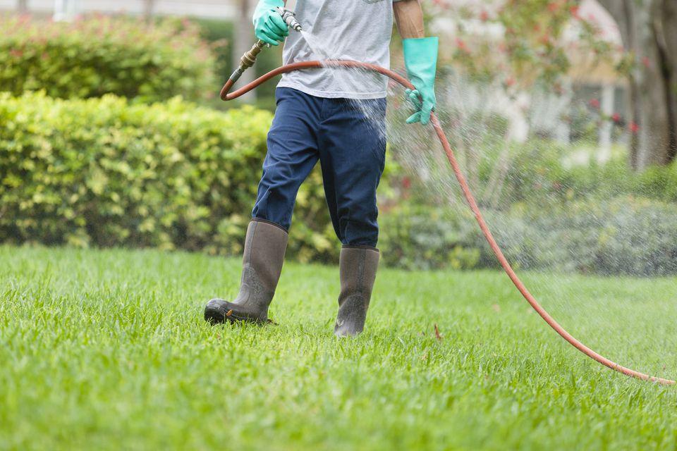 Yard pest control