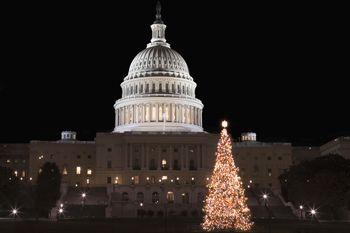 National Christmas Tree 2017 (Lighting, Tickets & More)