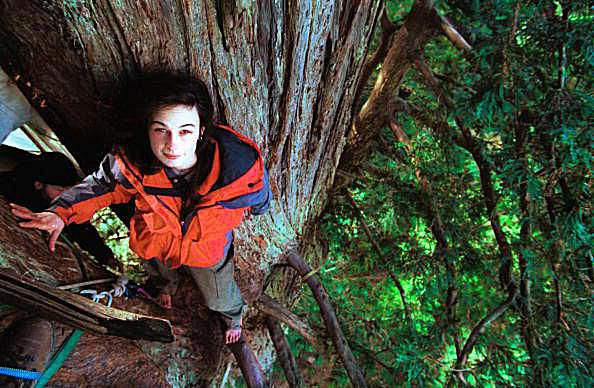 Julia 'Butterfly' Hill Stands In A 200-Foot Tall Old-Growth Redwood Tree In Humboldt County, Ca In This Undated 1998 File Photo. Hill Spent 738 Days Living In An Old-Growth Redwood Tree In The Headwaters Forest To Protest Old-Growth Redwood Logging By The Maxxam Corporation.