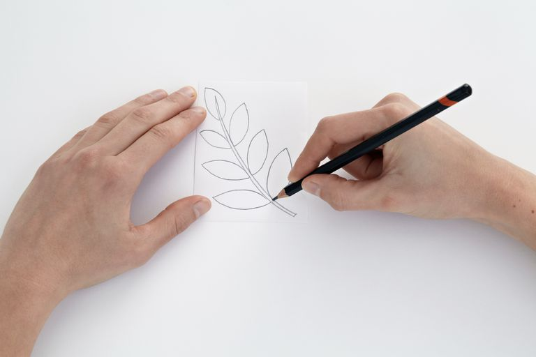 Drawing leaf design on paper, to be used for lino cutting or lino printing