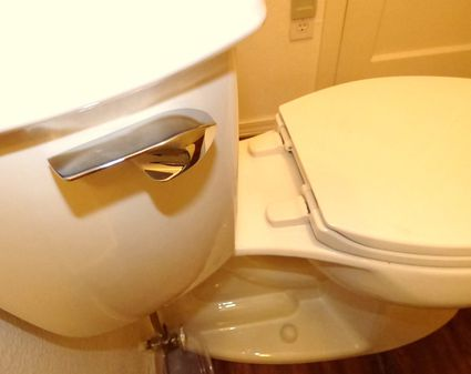 Kohler Highline Toilet Is Cheap and Available  But Does It Work 10 Features to Avoid When Buying a New Toilet. Most Comfortable Toilet Seat. Home Design Ideas