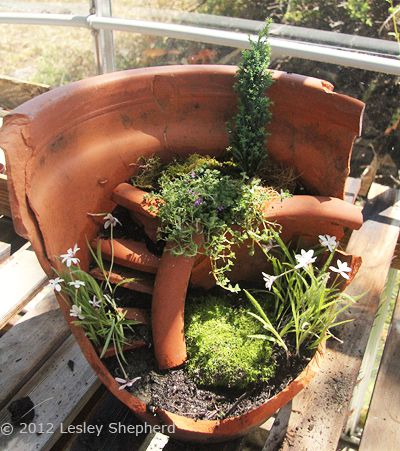 A freshly planted miniature garden in a broken flowerpot has space for plants to grow
