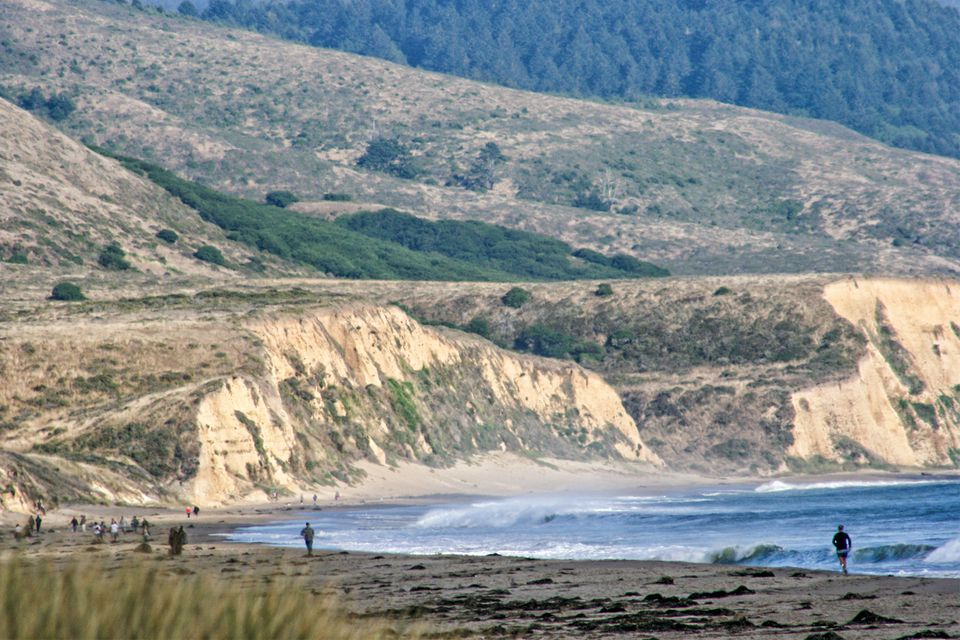 View of Limantour Beach