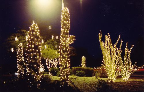 Ahwatukee Christmas lights