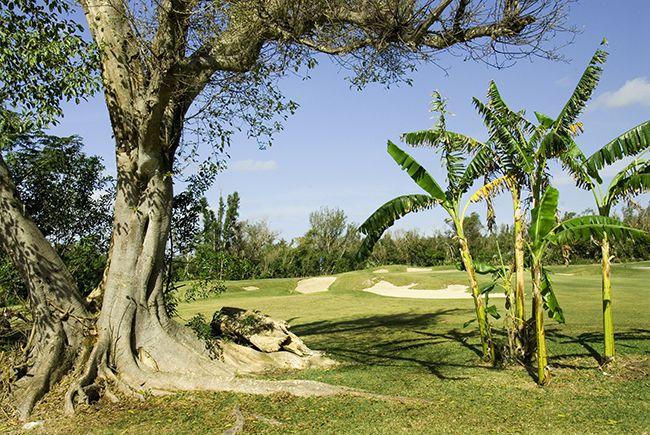 The 3rd Hole - Lucayan Golf Course - Freeport Bahamas