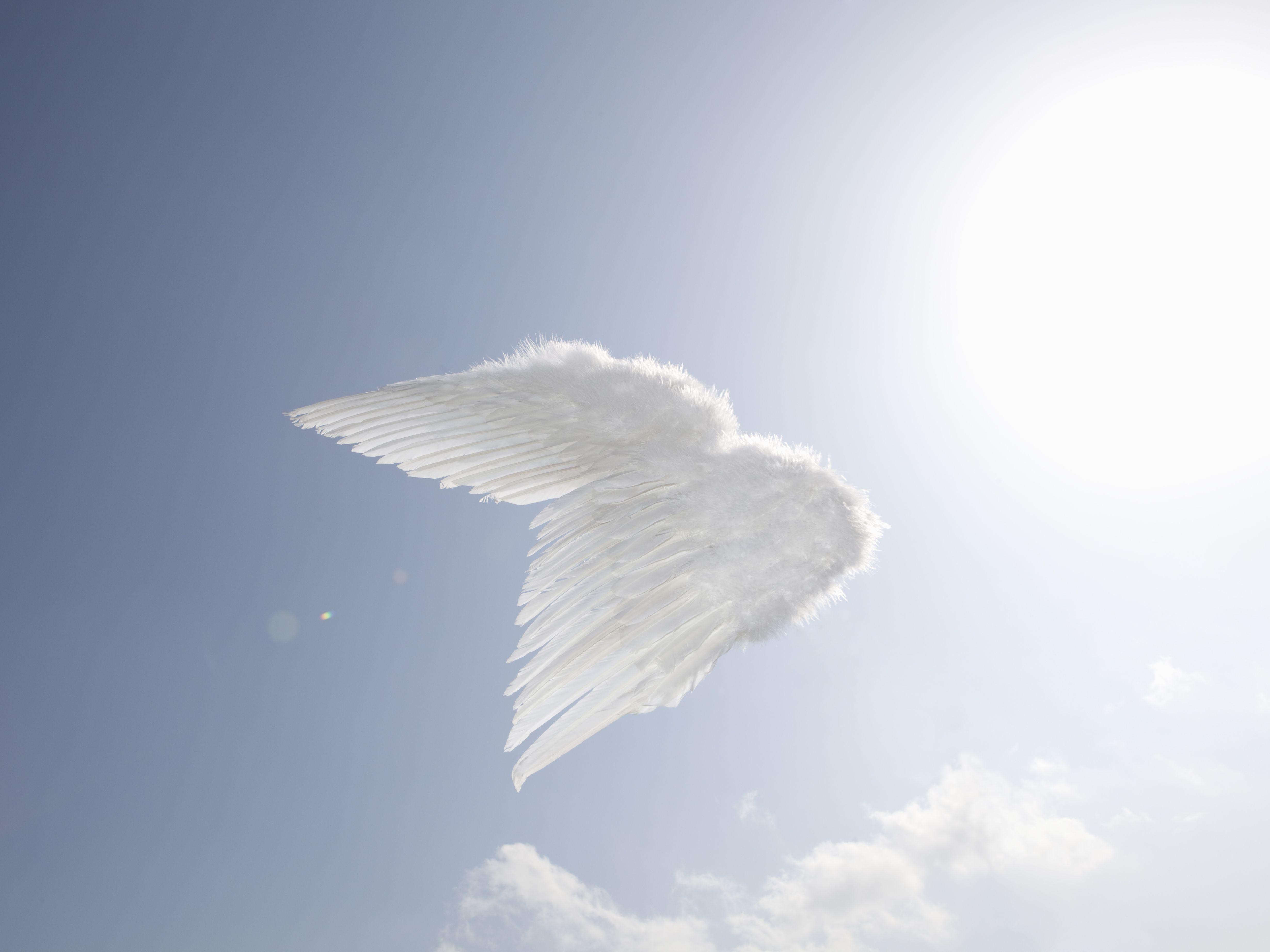 Personal stories of angel encounters buycottarizona
