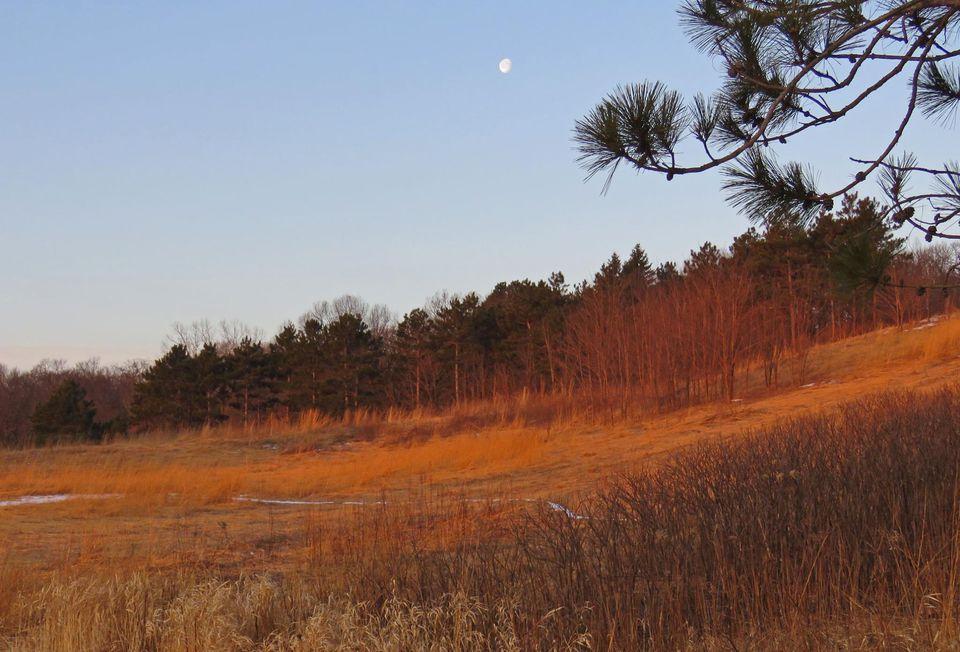 Battle Creek Regional Park
