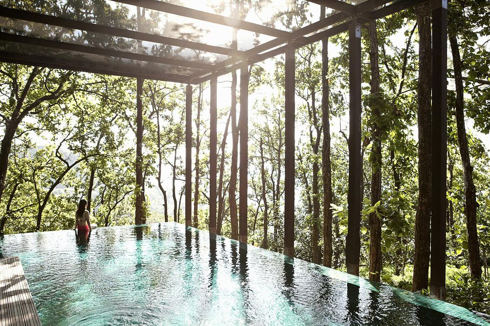 Infinity pool in the forest