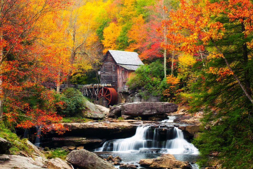 Additional West Virginia Fall Foliage Information