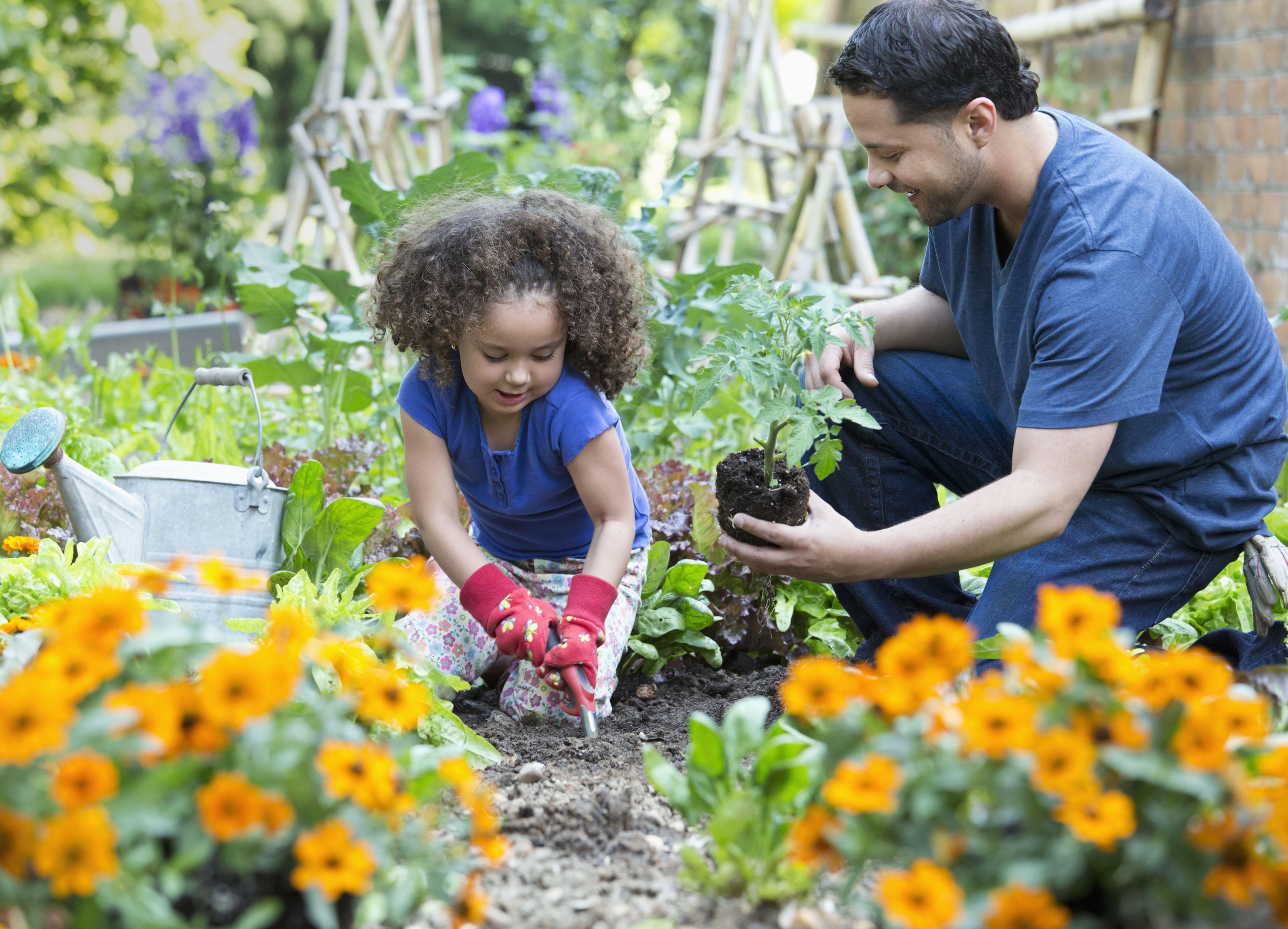 Benefits Of Having A Family Garden