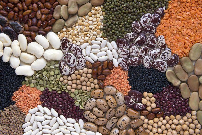 beans pulses legumes