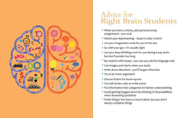 right brain dominant learning styles right brain dominant students should put their creative talents to work grace fleming