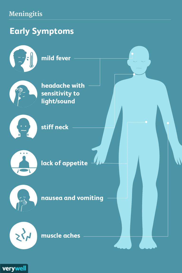 Meningitis Signs Symptoms And Complications