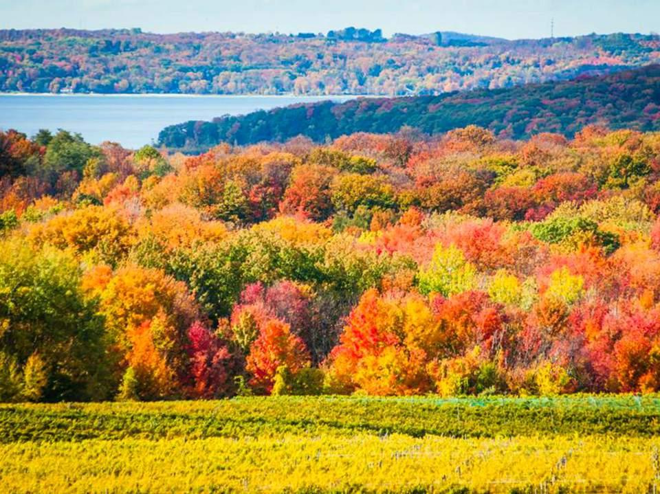 Traverse City, Michigan - fall