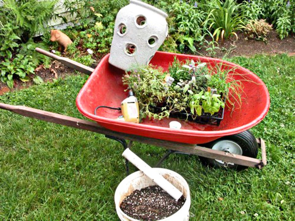 What You'll Need to Plant a Strawberry Pot