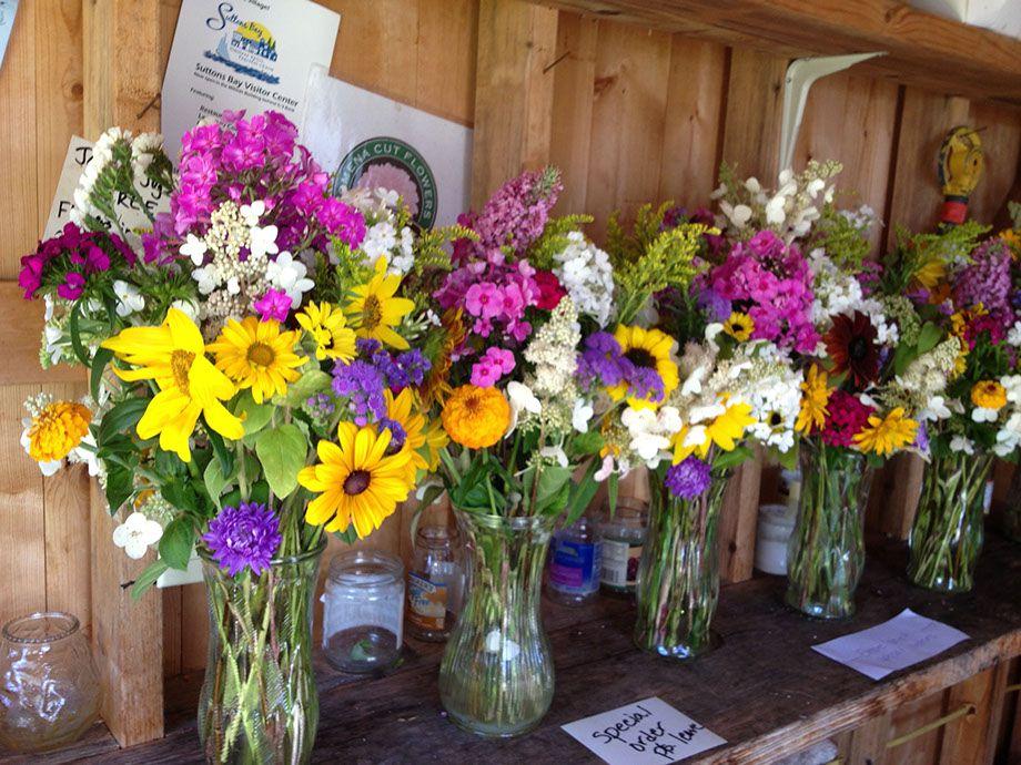 Omena Flower Farm