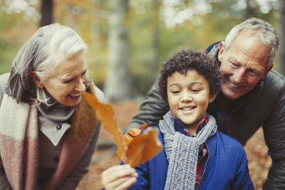 Do Grandparents Have the Right to Spoil Grandchildren