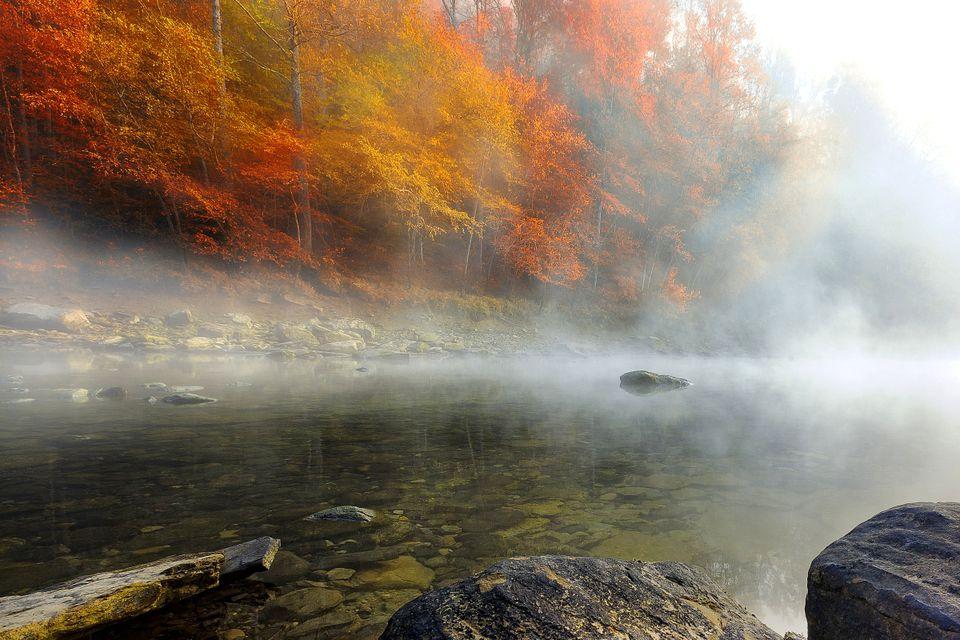 Alabama Peak Fall Color Guide
