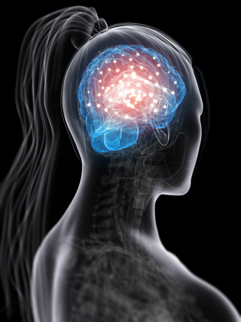 Brain Activity, conceptual computer artwork